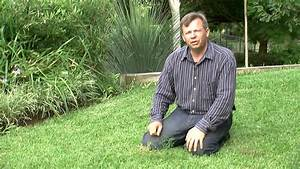 How To Keep Weeds Out Of Your Yard